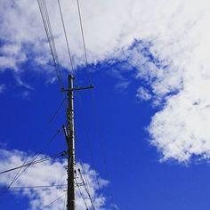 台風一過ありがとういい青空です