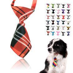 diy juguetes para perros - Buscar con Google