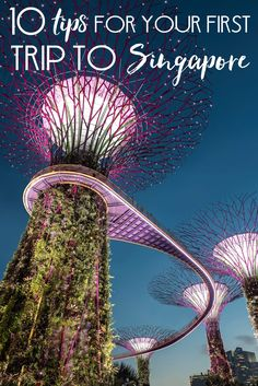 The Singapore 3 day itinerary. Guide to things to do in Singapore like Universal studios. Also, the best places to stay and how to get around Singapore. Singapore With Kids, Singapore Tour, Singapore Itinerary, Singapore Garden, Visit Singapore, Singapore Travel, Singapore Vacation, Hotel Marina Bay Sands, World Of Wanderlust