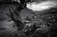 Glen Etive atmosphere.