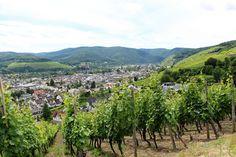 Auf dem Rotweinwanderweg Ahrweiler-Bad Neuenahr