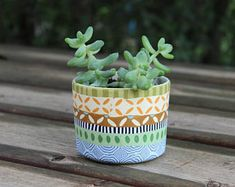 Handmade Polymer Clay Housewares and Home Decor by OrlyRabinowitz Indoor Planters, Planter Pots, Painted Plant Pots, Colorful Succulents, Small Potted Plants, Terracotta Pots, Handmade Polymer Clay, Diy And Crafts, Best Gifts