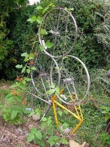 #repurposed bike parts #garden trellis