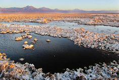 Salt Flat at the Atacama Desert: Chile