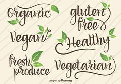 establecen logotipos escritos a mano. signos de alimentos naturales y orgánicos con hojas iconos Elementos del vector