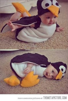 Look mom, I'm a penguin…