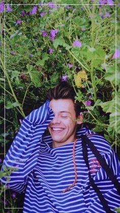 Harry Styles Lockscreen