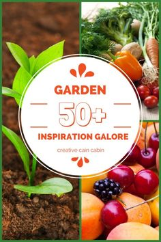 Garden Inspiration Galore - Creative Cain Cabin