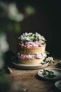 Lemon Chiffon & Rhubarb Fool Cake - The Kitchen McCabe - Food: Veggie tables Cupcakes, Cupcake Cakes, Sweet Recipes, Cake Recipes, Dessert Recipes, Nutella Mini, Pink Sauce, Rhubarb Recipes, Angel Food Cake