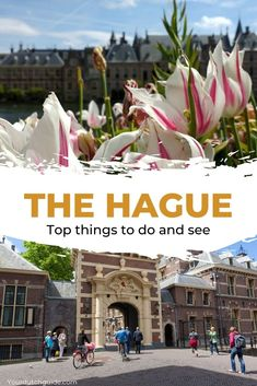 The Hague, The Netherlands. What to do in The Hague? Check out all the top sights and plan your visit.