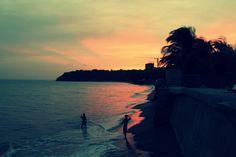 El Palmar, Panama #travel