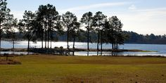 Reed Bingham State Park in Adel, Georgia.  This park has a paddle-in island campsite, swimming beach, kayak rentals, mini golf, geocaching, playground, bike rental, and some great hiking!