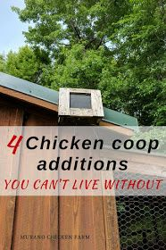 Chicken coop additions...the top 4 things I can't live without in my chicken coop. You need these! #chickens #homesteading