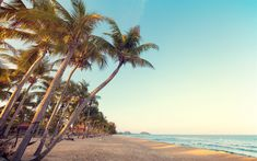 Download wallpapers tropical beach, sunset, palms, ocean, waves, travel