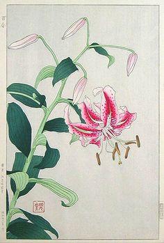 """""""Lily"""" Stargazer by Kawarazaki Shodo, 1954."""