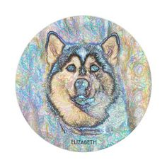 Blue Eyed Husky The Beautiful Dog Drawing Paper Plate