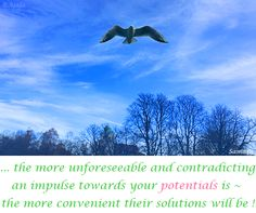... the more unforeseeable and contradicting an impulse towards your #potentials is ~ the more convenient their #solutions will be !