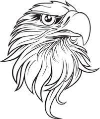 eagle drawings - Google'da Ara