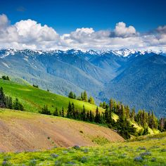 Olympic National Park's Absolute Must-See Destinations - Sunset Magazine Oregon Travel, Travel Usa, Oregon Vacation, Beach Travel, Olympic National Park Hikes, Places To Travel, Places To See, Camping Places, Hurricane Ridge