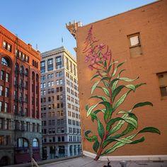 Les Peintures murales urbaines de Mona Caron (5)