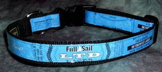 Adjustable Dog Collar from recycled Full Sail LTD Lager beer labels by squigglechick