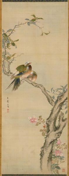 Tropical Birds on Flowering Cherry | Museum of Fine Arts, Boston