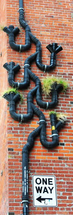 Russ' Photo Journal: Drain Pipe Design in Seattle Pvc Pipe Projects, Outdoor Projects, Garden Projects, Diy Projects, Outdoor Play Areas, Outdoor Art, Outdoor Gardens, Cool Pipes, Water Pipes