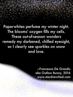 Paperwhites perfume my winter night. The blooms' oxygen fills my cells. These out-of-season wonders remedy my darkened, chilled eyesight, so I clearly see sparkles on snow and love.—Francesca De Grandis aka Outlaw Bunny