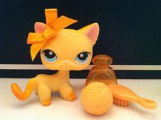 Littlest Pet Shop 339 Orange Race Cat Kitten | eBay