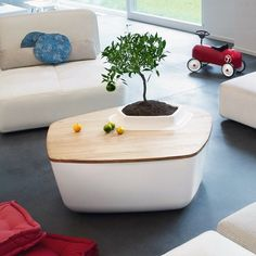 Volcane #Coffee #Table