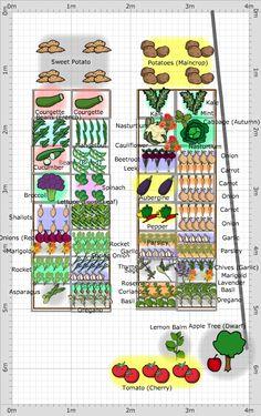 Garden Plan - 2013: Front Patio Ranealgh