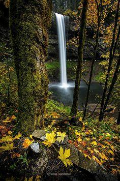 Fall Foliage at South Falls