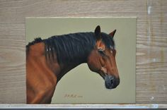 My first horse portrait in oil paints