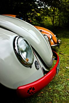 Colored VW Beetles