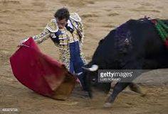 Risultati immagini per el fandi
