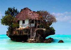 This House Rocks...almost Swiss family Robinson!