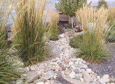 A rock garden with intermittent tall grasses.. Pretty