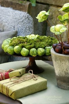 Arrangement with Brussels sprouts - The Swenglish Home: December 2011