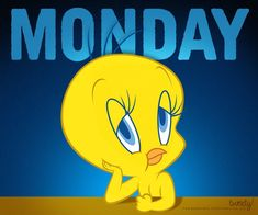 That is what I feel like on Monday too Happy Thursday Morning, Good Morning, Happy Monday, It's Monday, Favorite Cartoon Character, Comic Character, Tweety Bird Drawing, Tweety Bird Quotes, Monday Greetings