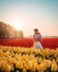 Image may contain: 1 person, standing, flower, sky, outdoor and nature Tulips, No Response, The Creator, Sky, Content, Flowers, Nature, Image, Outdoor