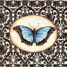 Fanciful Butterfly II