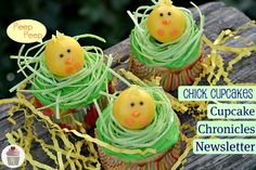 How cute are these Peep Chick Cupcakes (made with cake pops on top)?