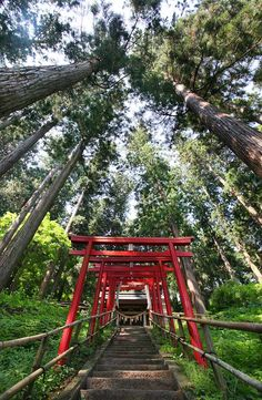 The World Heritage site of  Chuson-ji, Hiraizumi, Japan / www.WildCanadaSalmon.com #salmon #smokedsalmon