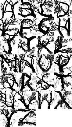 Alfabeto inspirado em galhos de árvores