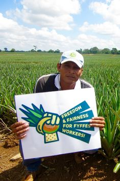 Honduran workers reported rampant wage theft and exposure to toxic agrochemicals on Fyffes' melon farms. By these workers decided to organize a union. Union Busting, Harvest Market, Fruit Company, Global Supply Chain, Public Relations, Fair Trade, Farms, Organize, Campaign