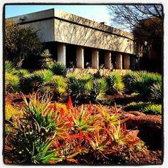 University of the Free State, #UFSToday- Bloemfontein Campus (Photo: Duard Grobbelaar from ViralSolutions)