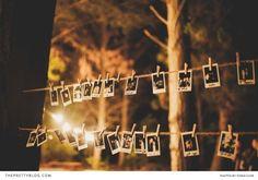 Food Trucks/Forest/Polaroid ...still considering the Polaroid thing