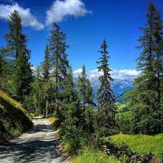 Walking down the hill #jardinjaponais #nendaz #valais #switzerland #visitvalais #igersuisse #igernendaz #alpes #valaiswallis #inlovewithnendaz #nendazisbeautiful #suisse #switzerland #swissmountains #montagnes