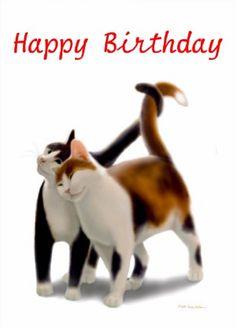 Found On Bing Cat Birthday Cards Happy Wall