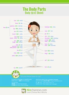 Body parts galore! Your key to a perfect massage in Chinese | Ninchanese